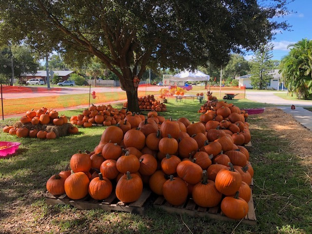 Roseland Pumpkin Patch
