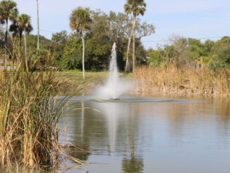 Pond near Schumann Drive in Sebastian.