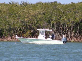 Fishing in Sebastian, Florida.