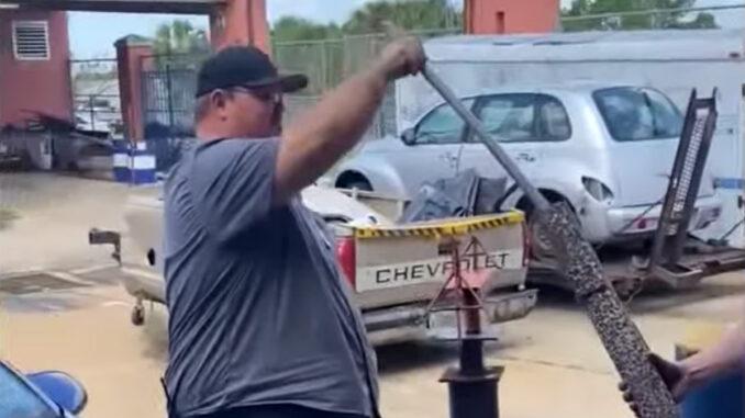 Teacher puts lizard in exhaust pipe