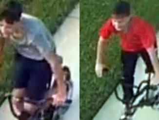2 suspects sought in vandalism.